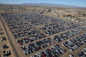 توضع سيارات فولكس فاغن في صحراء كاليفورنيا
